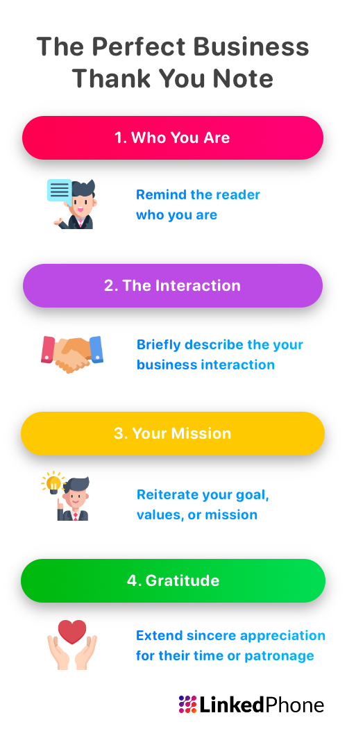 Infographic on How to Write the Perfect Business Thank You Lettert or Note in 4 Steps