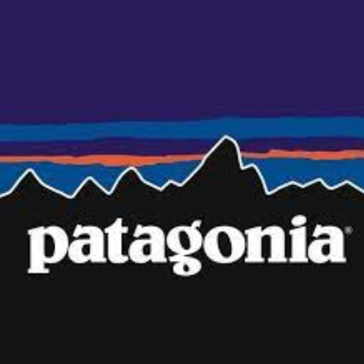 Patagonia Logo - Best Company Vision Statement Examples