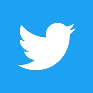 Twitter Logo - Social Media Marketing for Small Business