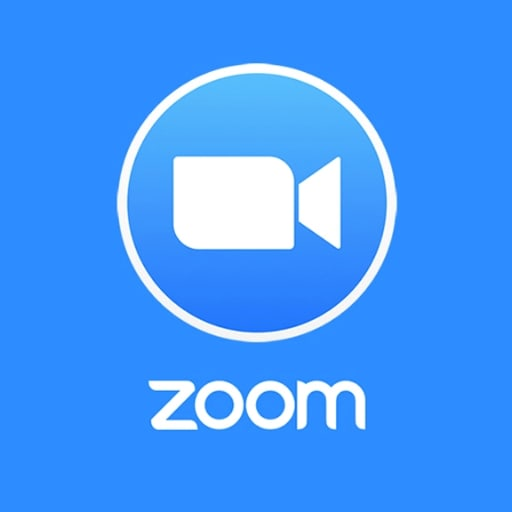 Zoom Logo - Best Company Vision Statement Examples